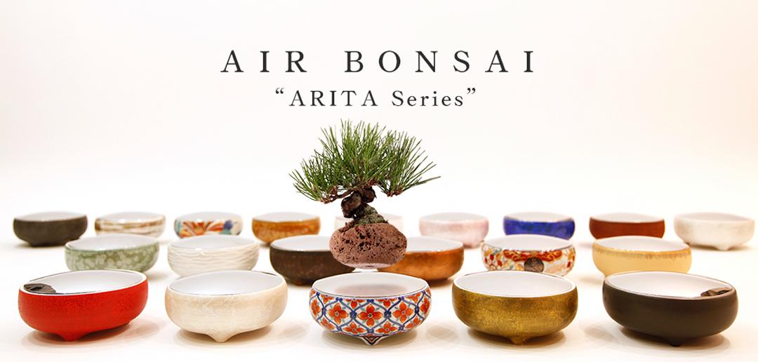 AIR BONSAI LIMITED