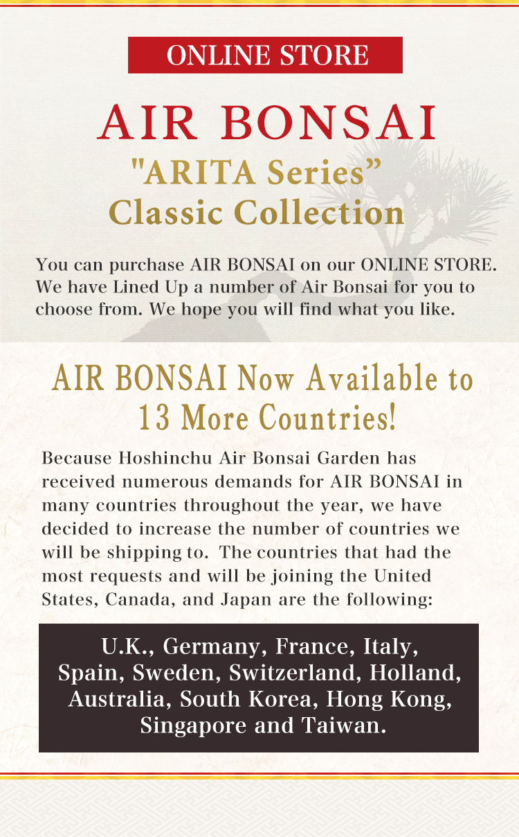 AIR BONSAI LIMITED